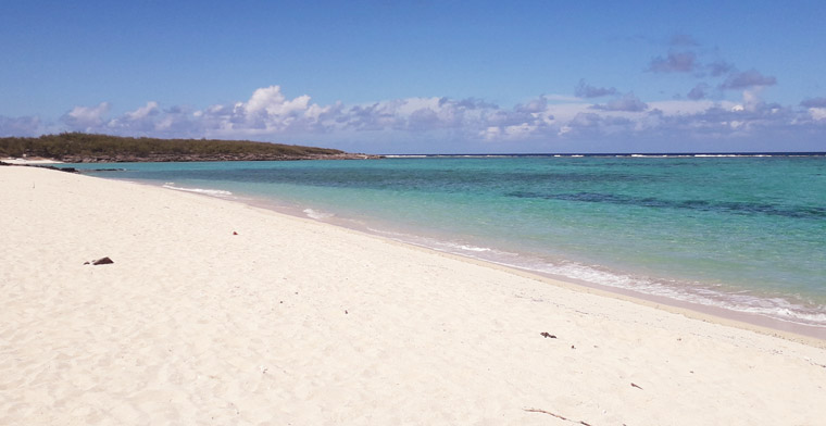 Plage paradisiaque à Rodrigues